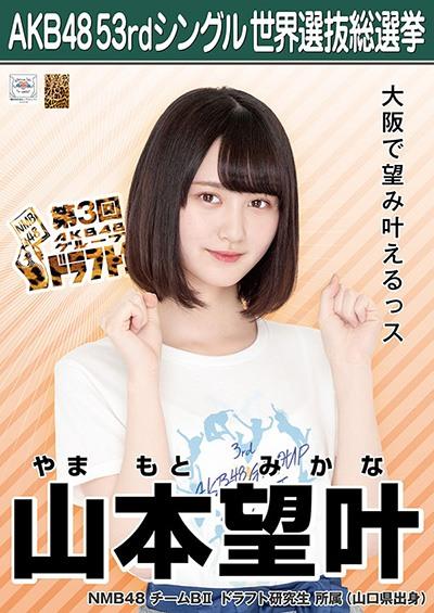山本望叶 AKB48 53rdシングル 世界選抜総選挙ポスター
